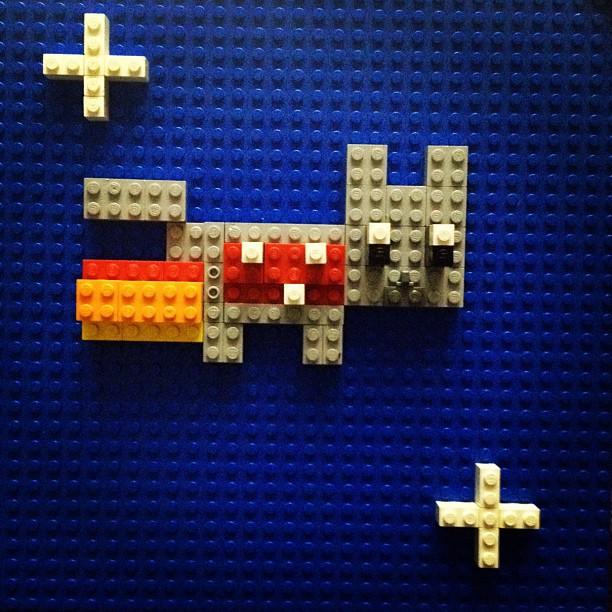 Nyan cat (Abbie)