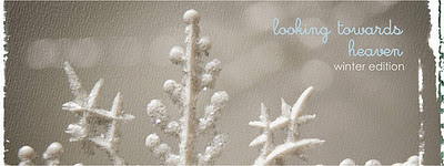 winter+blog+banner Gallery/Portfolio
